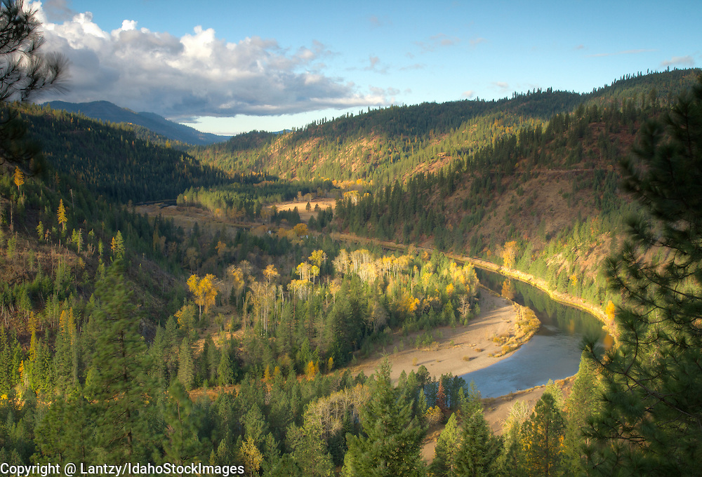 Idaho, North, Kingston. The North Fork of the Coeur d'Alene River winds it's way through autumn color of the Coeur d'Alene District of the Idaho Panhandle National Forest.