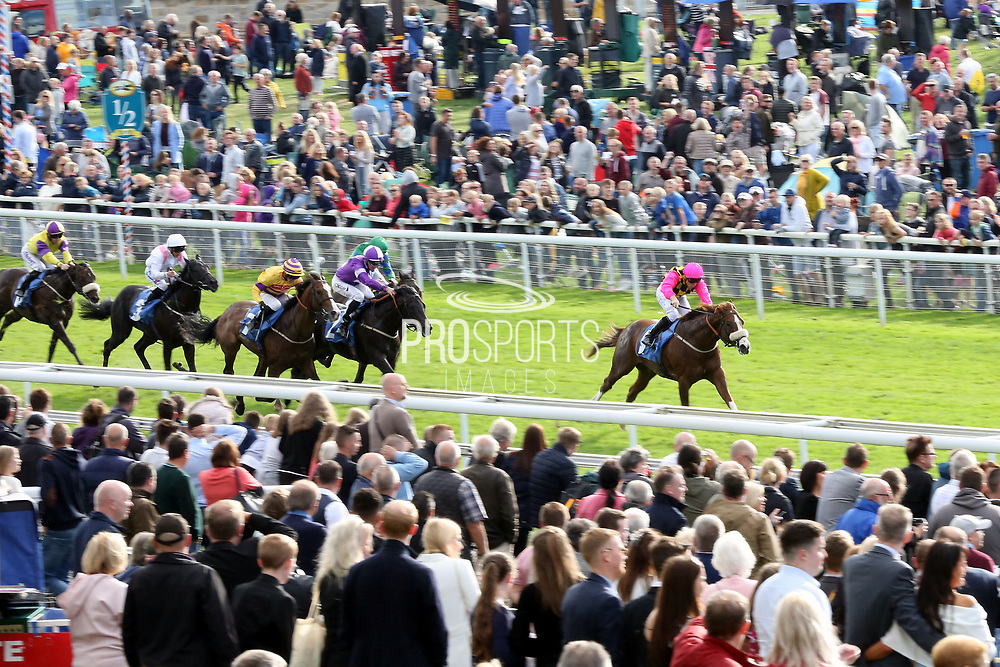 THREE CARD TRICK (9) ridden by Kevin Stott and trained by Kevin Ryan winning The Goodramgate British EBF Novice Stakes over 5f 110yds (£15,000)  during the Newby and the Press Family Raceday at York Racecourse, York, United Kingdom on 9 September 2018. Picture by Mick Atkins.