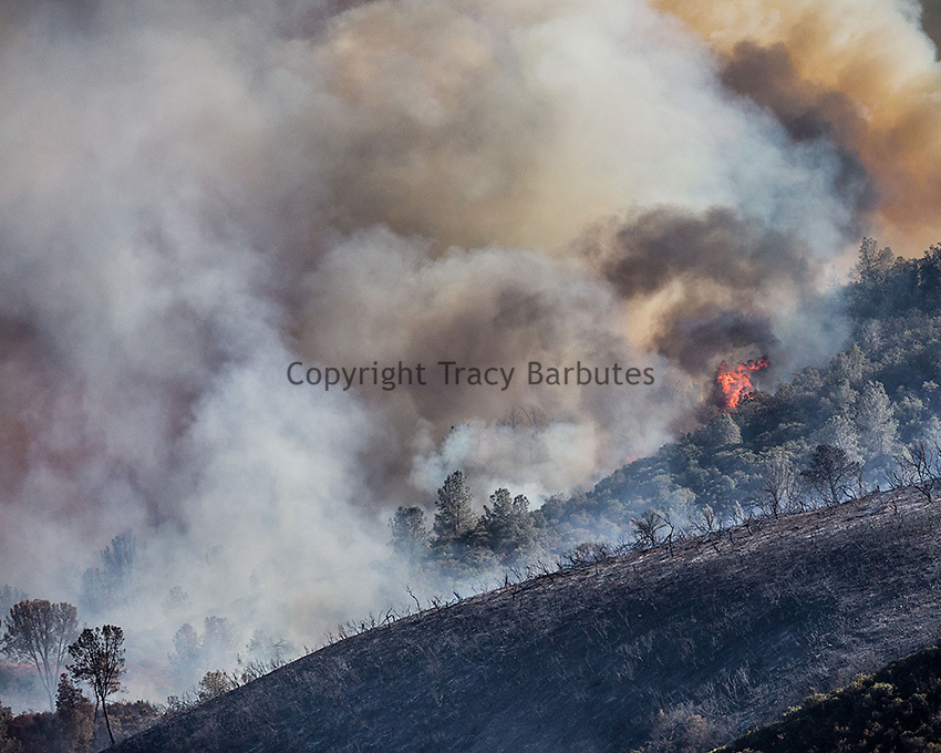 September 26-27, 2016<br /> The Marshes Fire burns near the Moccasin Power Plant, along Hwy 49 between Moccasin and Coulterville, California.