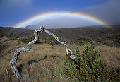 Hawaii: Haleakala National Park