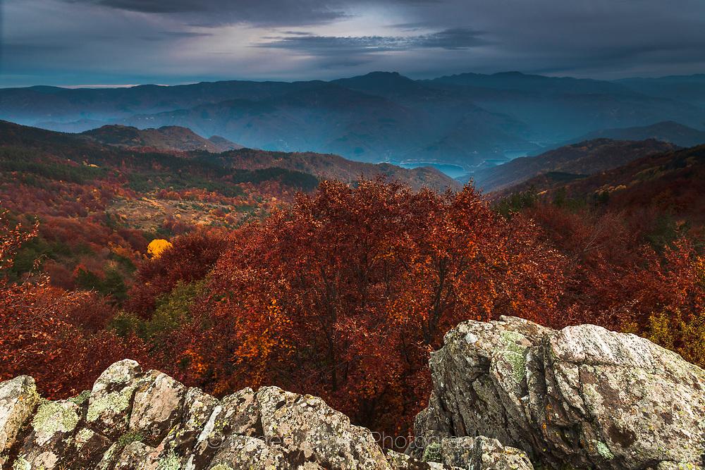 Colorful autumn scene at dusk