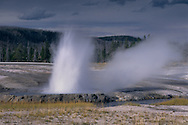 Cliff Geyser, Black Sands Basin, Yellowstone National Park, WYOMING