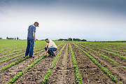 09 June 2011- Forth Farms in Ames, Iowa is photographed for FMC Authority.
