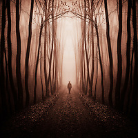 Surreal forest with man on path