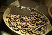 Roasting chocolate beans as done in colonial America. Exhibited by American Heritage Cholocate, the Historical Division of Mars.