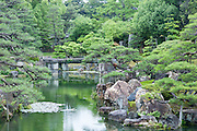 Kyoto garden and pond (Japan)