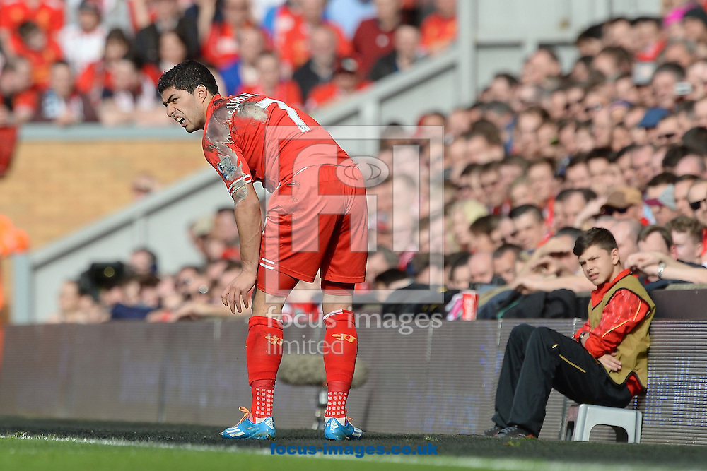 Luis Su&aacute;rez of Liverpool complains about a decision during the Barclays Premier League match at Anfield, Liverpool<br /> Picture by Ian Wadkins/Focus Images Ltd +44 7877 568959<br /> 30/03/2014
