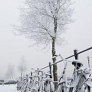 Nederland Rotterdam 21 december 2007 ..Besneeuwde fietsen op het Noordereiland..Foto David Rozing