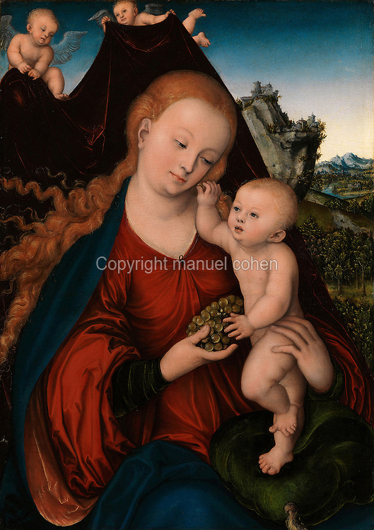 Virgin and Child with a bunch of grapes, painting, c. 1520, oil on wood, by Lucas Cranach the Elder, 1472-1553, in the Alte Pinakothek, Munich, Bavaria, Germany. Picture by Manuel Cohen