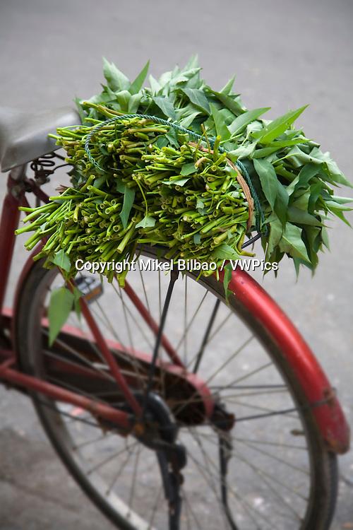 bicycle and merchant.<br /> Hanoi, Vietnam.