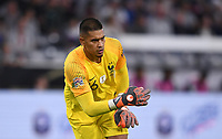 FUSSBALL UEFA Nations League in Muenchen Deutschland - Frankreich       06.09.2018 Torwart Alphonse Areola (Frankreich) --- DFB regulations prohibit any use of photographs as image sequences and/or quasi-video. ---