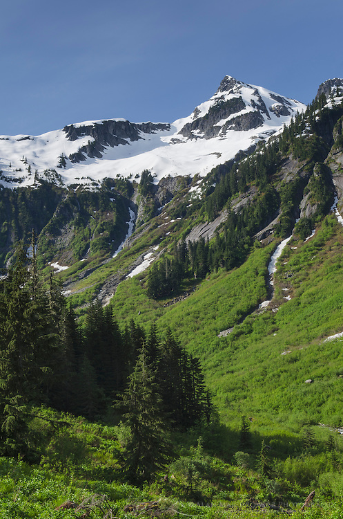 Ruth Creek Valley from Hannegan Pass Trail, North Cascades Washington
