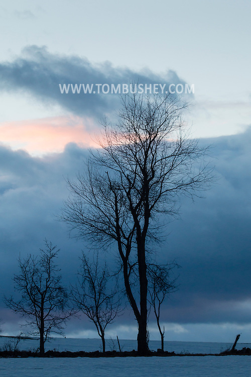 Salisbury Mils, New York - Trees are silhouetted against the cloudy sky at twilight on March 15, 2015.
