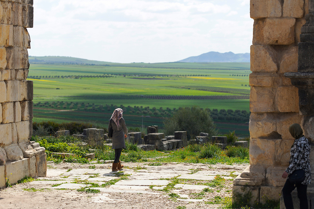 Volubilis Roman ruins, inbetween Meknes and Moulay Idriss, Middle Atlas, Morocco, 2016-04-11.<br />