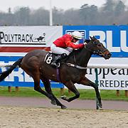 Honourable Knight and David Probert winning the 1.00 race