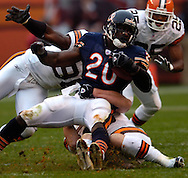 MORNING JOURNAL/DAVID RICHARD.Chicago running back Thomas Jones is brought down after a gain yesterday against the Browns.