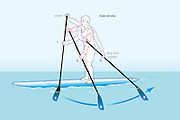 Vector illustration showing the techniques of a stand up surfing (SUP) side stroke.