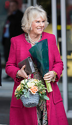 Camilla, Duchess of Cornwall  departs New Zealand House, after attending a reception to celebrate New Zealand women living and working in the UK, on Waitangi Day. New Zealand House, London, United Kingdom. Thursday, 6th February 2014. Picture by i-Images