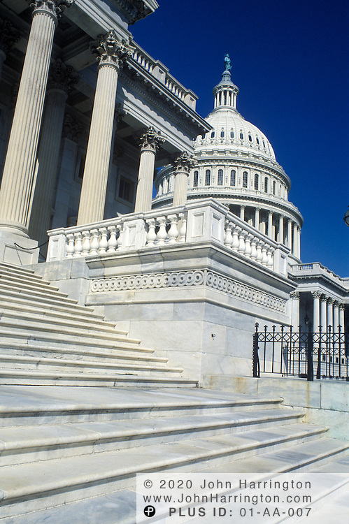THE STEPS OF THE  US CAPTIOL..