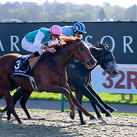 Grasped - James Doyle wins from Serenity Spa - Oisin Murphy and Starlight Symphony - John Fahy<br /> 32Red Immortal Romance Slot Fillies´ Handicap<br /> Lingfield Park 9/4/2014.