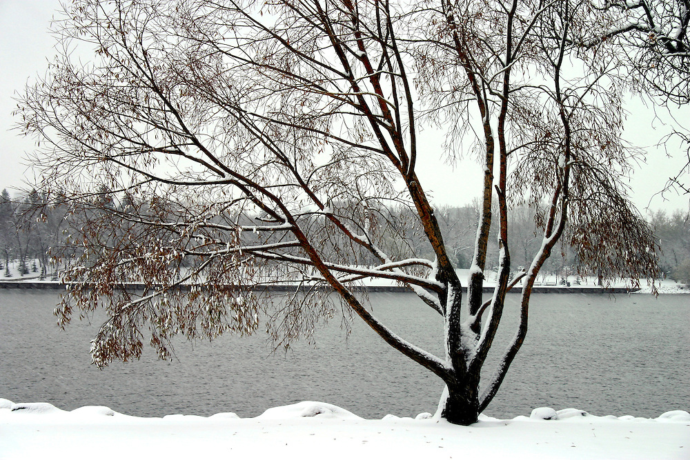 New snow along Wascana Lake, but lake is still open, Wascana Centre Regina