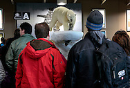 Arctic scenery welcomes passengers at Yellowknife airport luggage belt.