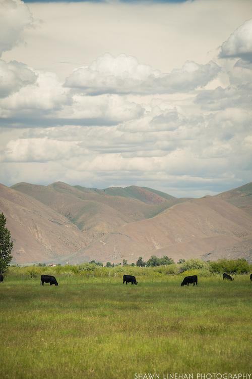 Idaho HWY 20
