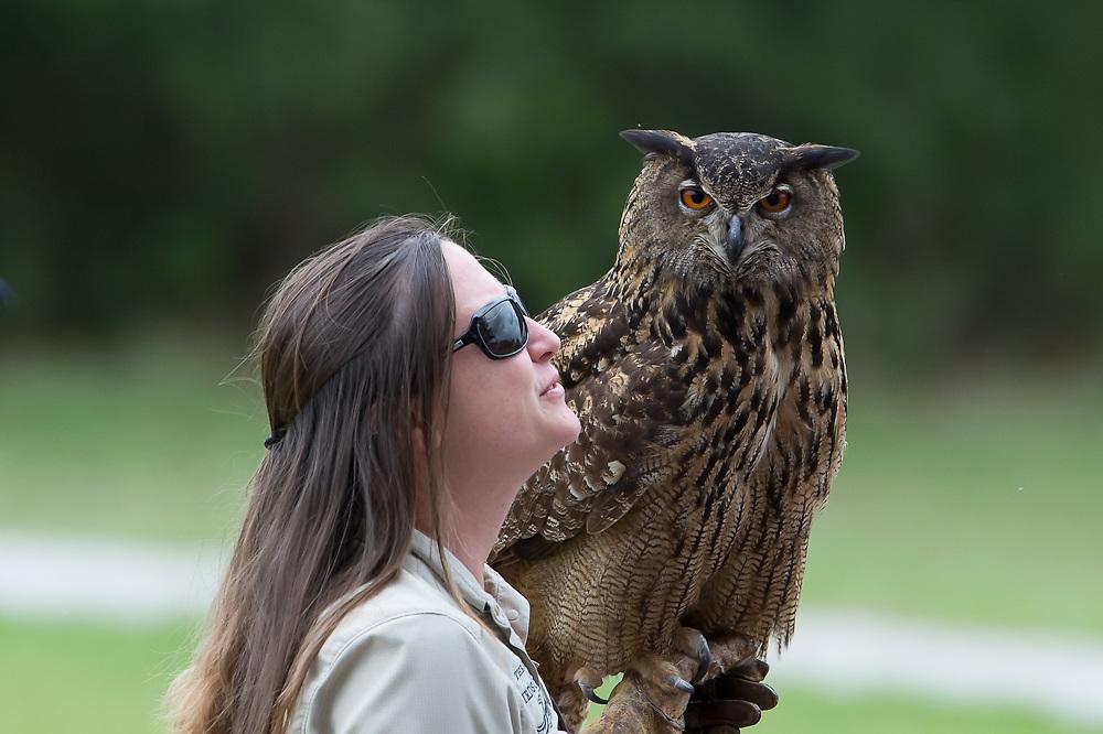 The Center for Birds of Prey of Charleston SC
