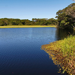 """Lagoa feia (Parque Estadual Paulo Cesar Vinha) fotografado em Guarapari, Espírito Santo -  Sudeste do Brasil. Bioma Mata Atlântica. Registro feito em 2007.<br /> <br /> ENGLISH: Ugly lagoon photographed in Guarapari, Espírito Santo - Southeast of Brazil. Atlantic Forest Biome. Picture made in 2007."""