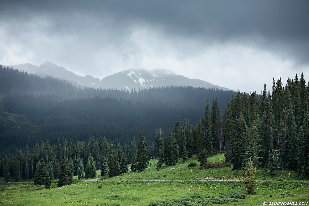 inclement; weather; forested; forest; dirt road; path; lead; direction; high; mountain; pass; Crested Butte; Colorado; alpine; nature; landscape; pine; trees; rain; clouds; moody; Keblar Pass; elevation