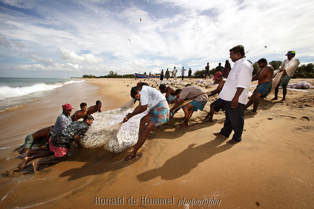 Catching fish with net ronald de hommel archive for Sri lanka fishing