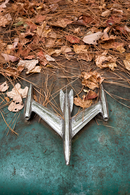 This large and elaborate chrome jet hood ornament was found in a heavily forested car junkyard under towering Georgia pines with some hardwoods mixed in. The car is probably an Oldsmobile 88 from the early fifties, but that&rsquo;s only a reasonable guess. I enjoy the silver jet against the rusted and faded aquamarine blue, with the thick pile of leaves and pine needles behind like a cloud of smoke from a take off.<br /> <br /> In this very old junkyard that was started in the 1930&rsquo;s, the cars are covered in thick pine needle blankets after having been there under the trees for decades. The organic material decomposes and becomes dirt underneath, so many of the cars have metal roofs and hoods rotting through after being in constant contact with the damp earth.