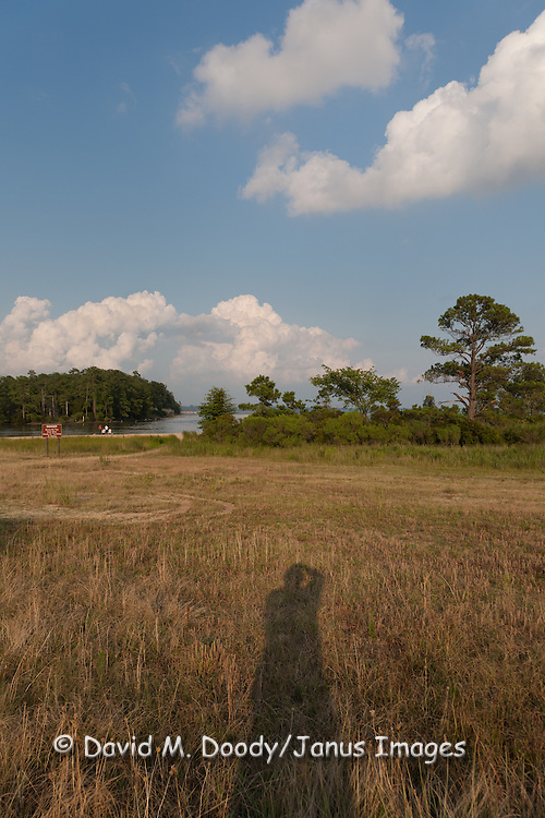 Photographer's Shadow. College Creek at the James River at high tide on the Colonial Parkway near Jamestown, Virginia. Summer  clouds tower over the landscape