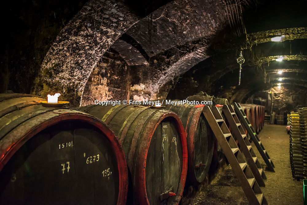 Szigliget, Balaton, Hungary, August 2015.  Esterhazy Pince wine cellar. Lake Balaton is a freshwater lake in the Transdanubian region of Hungary. It is the largest lake in Central Europe and one of the region's foremost tourist destinations. The mountainous region of the northern shore is known both for its historic character and as a major wine region, while the flat southern shore is known for its resort towns. Photo by Frits Meyst / MeystPhoto.com