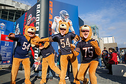 © Licensed to London News Pictures. 06/10/2019. London, UK. Chicago Bears fans wearing bear costume are seen  tackling each other as tens of thousands of American Football fans arrive for the NFL (The National Football League) London Games when Oakland Raiders faces Chicago Bears in the first of the two games to be played at the new Tottenham Hotspur Stadium. Photo credit: Dinendra Haria/LNP