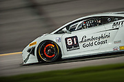 #81 Brad Stacey, GMG Racing, Lamborghini Gold Coast