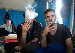 © Licensed to London News Pictures. 30/08/2015. Calais, France. Refugees from Kuwait enjoy a cigarette in the tent at the refugee camp in Calais, also known as the Jungle. Tomorrow the French PM, Manuel Valls, will visit the day centre Jules Ferry at the camp. Photo credit : Isabel Infantes/LNP
