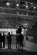 A rider waits to enter the main ring to ride in the Greenhawk Canadian Championship - Round 1 at The Royal Horse Show, TORONTO, CANADA.  November 4 2016