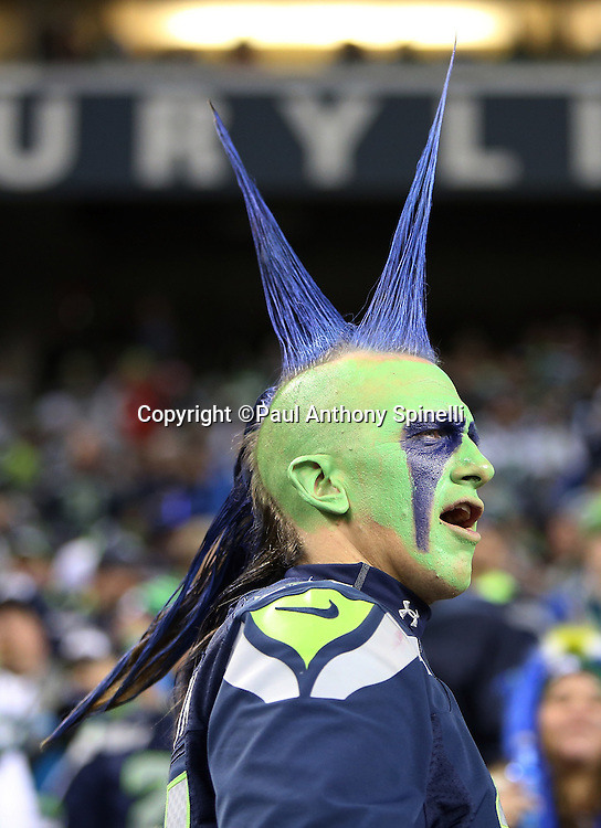 A fan sports a painted face and a team colored spiked haircut as he cheers for the team during the Seattle Seahawks NFL week 19 NFC Divisional Playoff football game against the Carolina Panthers on Saturday, Jan. 10, 2015 in Seattle. The Seahawks won the game 31-17. ©Paul Anthony Spinelli