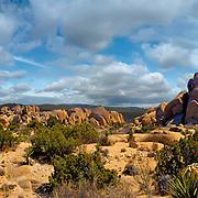 Desert Arid, Scenic, Sand Dunes