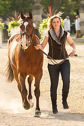 Sarah Stretton (GBR) leads Skip On for the vet's inspection during the trot up at the 2013 Mitsubishi Motors Badminton Horse Trials. Thursday 02  May  2013.  Badminton, Gloucs, UK..Photo by: Mark Chappell / i-Images