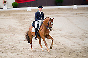 Vincent Bol - Vip<br /> It's All Dressage 2016<br /> © DigiShots
