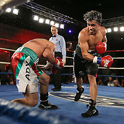 Daniel Lozano (Black trunks) and Antonio Tostado fight during a Telemundo boxing match at the A La Carte Pavilion  on Friday, August 1, 2014 in Tampa, Florida.  Lozano won the fight with an 8th round stoppage after dropping Tostado three times. (AP Photo/Alex Menendez)