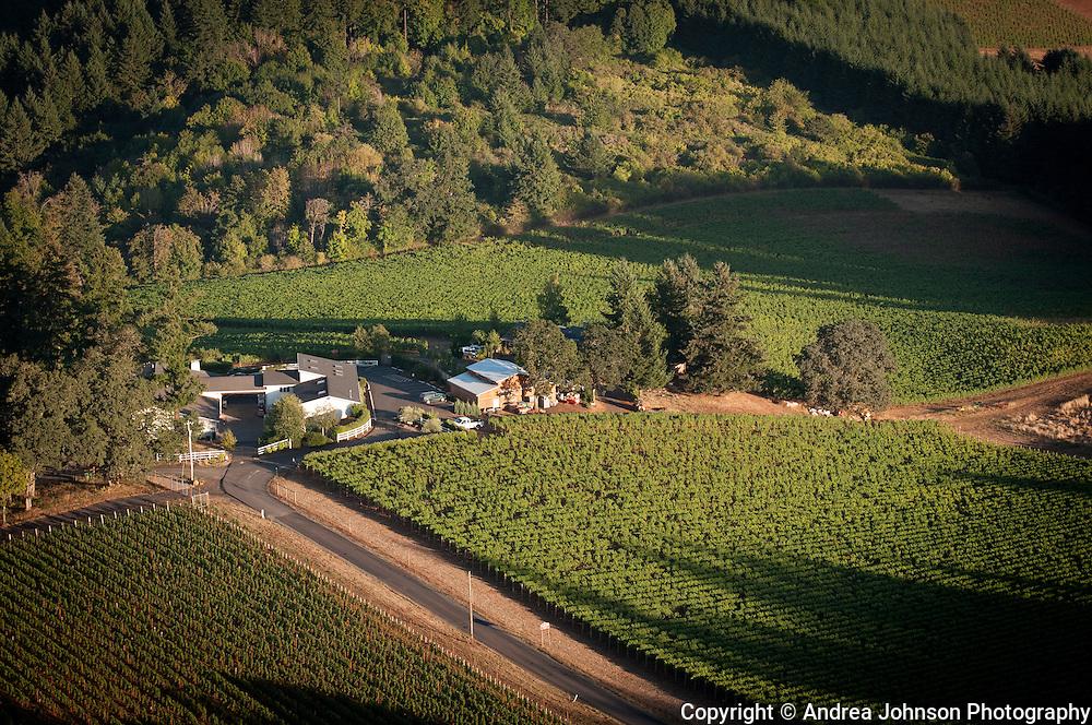 Lange Estates, Willamette Valley, Oregon