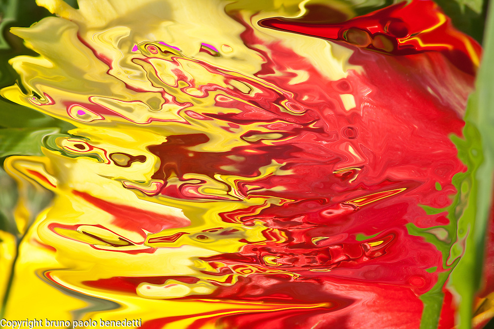 Red and yellow colors of the nature abstractions with shades.