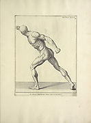 Male full body side view woodcut print of Human Anatomy from Anatomia per uso et intelligenza del disegno printed in Rome in 1691