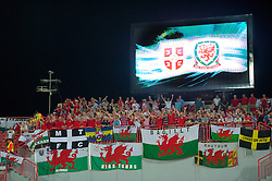 NOVI SAD, SERBIA - Tuesday, September 11, 2012: Wales supporters before the 2014 FIFA World Cup Brazil Qualifying Group A match against Serbia at the Karadorde Stadium. (Pic by David Rawcliffe/Propaganda)
