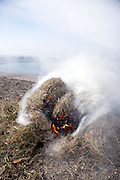bail of collected beach straw burning at the water edge of Tokyo bay