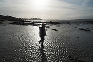 France , Brittany - bay of Saint Jacut de la mer   at low tide