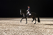 Emile Faurie - Delatio<br /> Jumping Amsterdam 2018<br /> © DigiShots